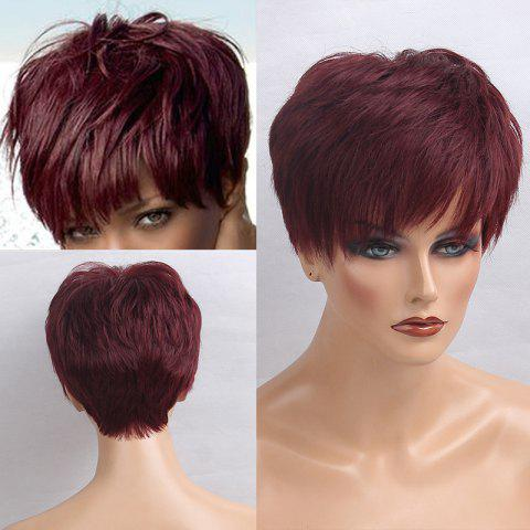 Trendy Short Inclined Bang Layered Straight Human Hair Wig WINE RED