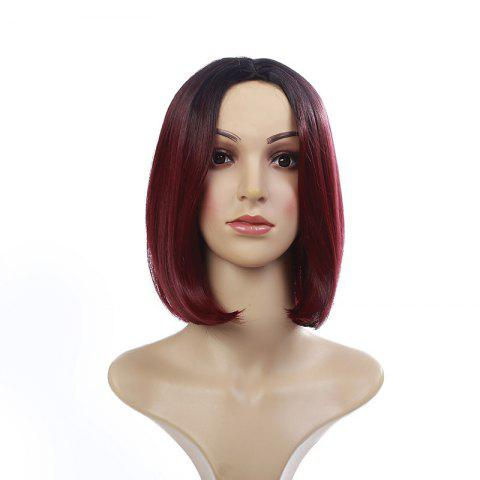Middle Part Short Straight Bob Colormix Synthetic Wig - Colormix - 14inch