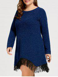 Plus Size Sparkly Fringe Long Sleeve  Dress