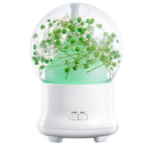 Humidificateur à air Eternal Flower Aroma Ultrasonic Mist Maker Vert