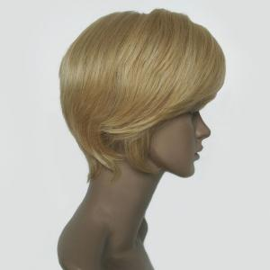 Oblique Bang Short Straight Hair Hair Wig -