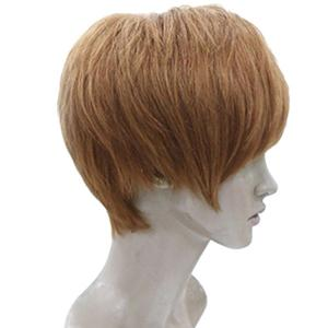 Short Side Bang Layered Straight Human Hair Wig -