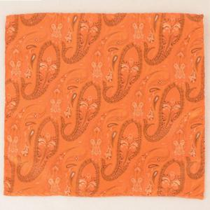 Paisley Jacquard Stripe Print Pocket Square - Orange