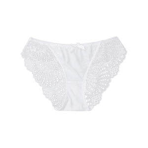 See Through Lace Panties - Blanc L