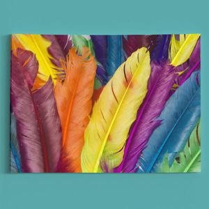 Wall Art Feather Print Canvas Painting -