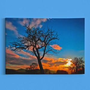 Tree Sky Print Canvas Wall Art Painting - BLUE 1PC:24*39 INCH( NO FRAME )