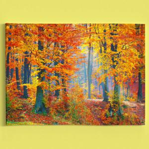 Forest Tree Scenery Canvas Prints Wall Art Painting - MAPLE LEAF 1PC:24*39 INCH( NO FRAME )