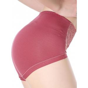 Mesh Panel Lingerie Panties - RUSSET-RED ONE SIZE