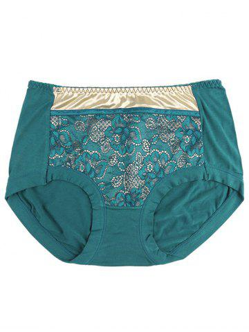 Fashion Lace Panel Panties BLACKISH GREEN ONE SIZE
