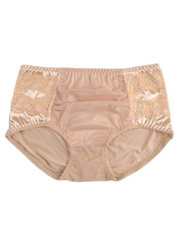 New Mesh Panel Lingerie Panties - ONE SIZE COMPLEXION Mobile
