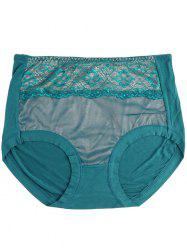Mesh Panel Lingerie Panties - BLACKISH GREEN ONE SIZE
