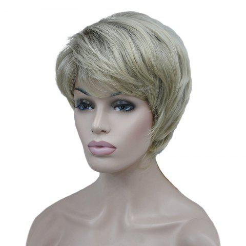 Perruque synthétique courte incliné Bang Natural Straight Colormix Palomino