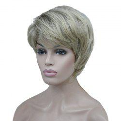 Perruque synthétique courte incliné Bang Natural Straight Colormix - Palomino