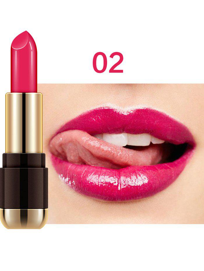 Chic Multipurpose Long Last Moist Velvet Lipstick