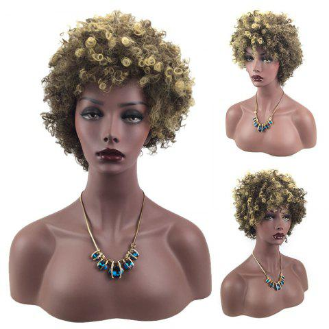 Short Side Bang Colormix Fluffy Afro Curly Synthetic Wig