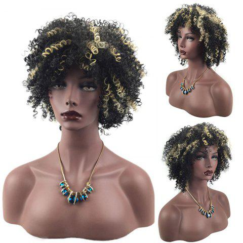 Short Side Bang Spaghetti Shaggy Afro Curly Synthetic Wig