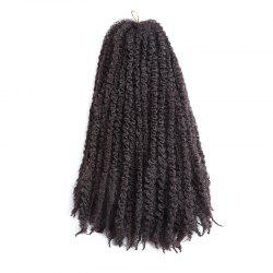Long Fluffy Afro Kinky Curly Braids Cheveux Synthétiques - Brun