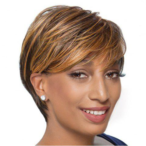 Short Side Bang Colormix Layered Straight Pixie perruque de cheveux humains Multicolore
