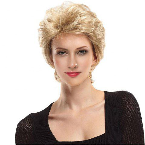 Chic Short Side Bang Fluffy Slightly Curly Lace Front Human Hair Wig