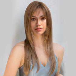 Long Inclined Wispy Bang Layered Straight Synthetic Wig - COLORMIX