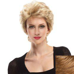 Short Side Bang Fluffy Slightly Curly Lace Front Human Hair Wig -
