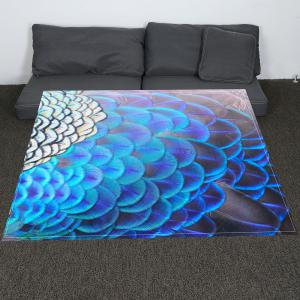 Coral Fleece Feathers Printed Blanket -
