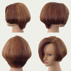 Side Parting Short Fluffy Straight Bob Synthetic Wig - BROWN