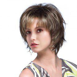 Short Side Bang Fluffy Colormix Natural Straight Human Hair Wig - COLORMIX