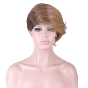 Short Side Fringe Two Tone Straight Synthetic Wig - COLORMIX