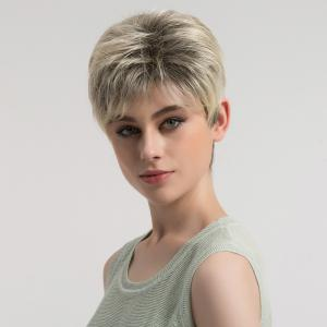 Short Fluffy Layered Colormix Straight Synthetic Wig - COLORMIX