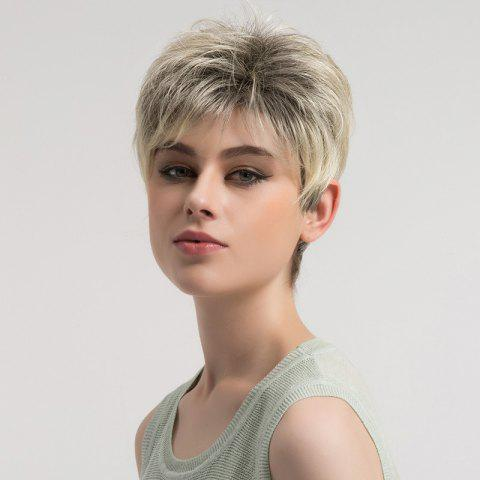 Best Short Fluffy Layered Colormix Straight Synthetic Wig COLORMIX