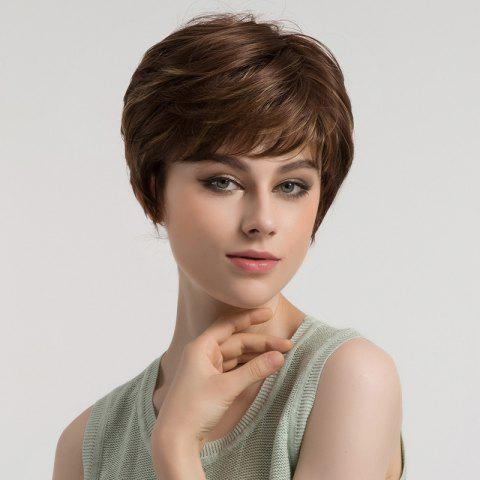 Best Side Bang Short Layered Slightly Curly Synthetic Wig BROWN AND GOLDEN