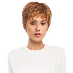 Short Side Bang Layered Fluffy Straight Human Hair Wig -