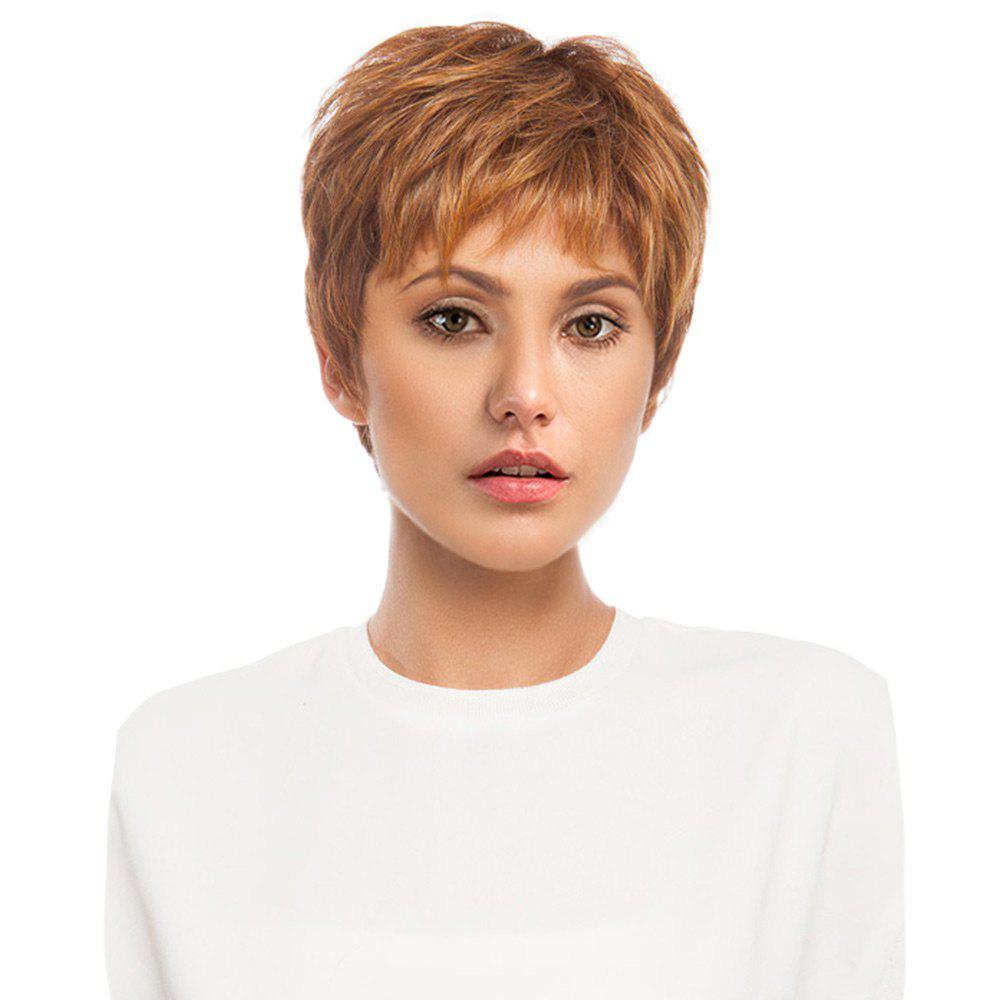 Short Side Bang Layered Fluffy Straight Human Hair WigHAIR<br><br>Color: LIGHT BROWN; Type: Full Wigs; Cap Construction: Capless; Style: Straight; Cap Size: Average; Material: Human Hair; Bang Type: Side; Length: Short; Occasion: Carnival,Casual,Daily,Office &amp; Career,Party; Length Size(CM): 22; Weight: 0.2000kg; Package Contents: 1 x Wig;