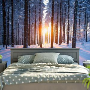 Bedroom Decor Snowscape Print Wall Tapestry - COLORMIX W59 INCH * L59 INCH