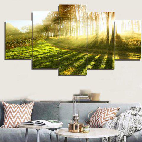 Fancy Sunlight Forest Path Way Printed Decorative Canvas Paintings