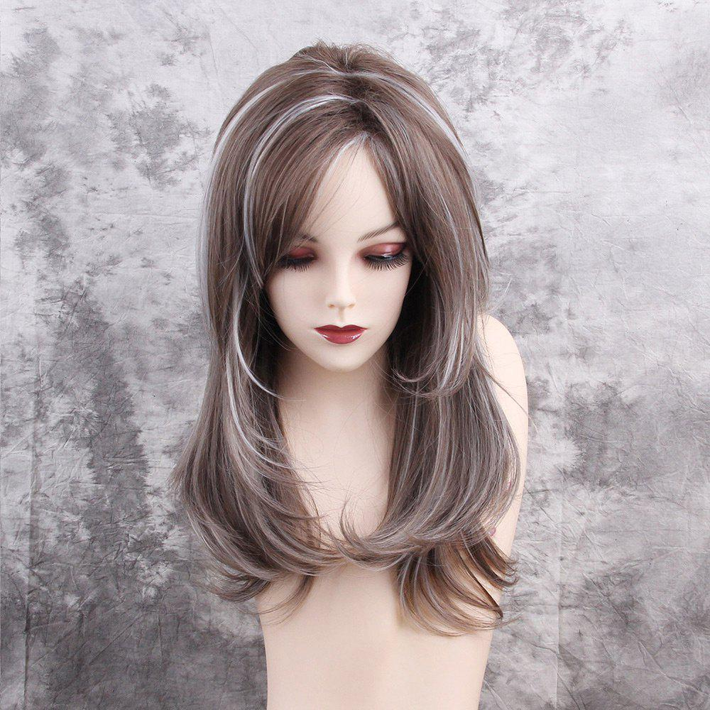 Long Side Fringe Highlighted Layered Straight Synthetic WigHAIR<br><br>Color: COLORMIX; Type: Full Wigs; Cap Construction: Capless; Style: Straight; Material: Synthetic Hair; Bang Type: Side; Length: Long; Length Size(CM): 48; Weight: 0.2200kg; Package Contents: 1 x Wig;