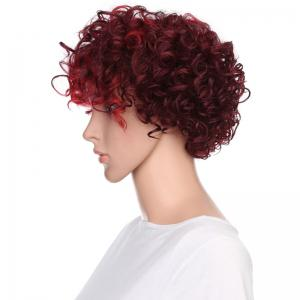 Short Side Bang Fluffy Curly Highlighted Synthetic Wig -