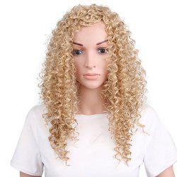 Long Inclined Bang Fluffy Curly Synthetic Wig -