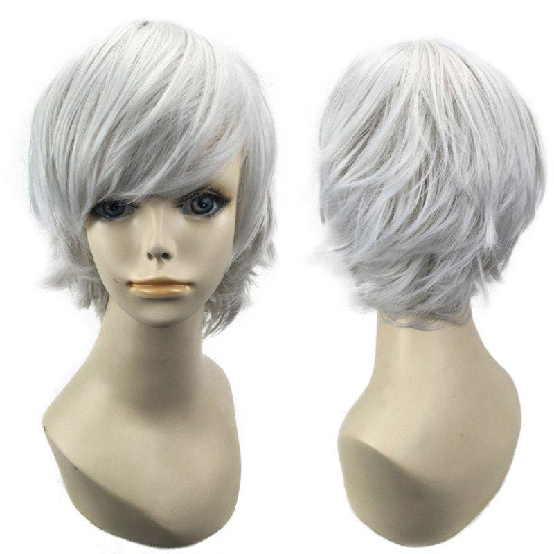 Short Side Bang Straight Synthetic Cosplay WigHAIR<br><br>Color: FROST; Type: Full Wigs; Style: Straight; Material: Synthetic Hair; Bang Type: Side; Length: Short; Length Size(CM): 28; Weight: 0.1200kg; Package Contents: 1 x Wig;