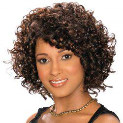 Short Inclined Bang Fluffy Curly Synthetic Wig -