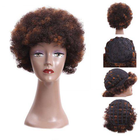 Shop Short Fluffy Afro Curly Heat Resistant Synthetic Wig