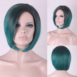 Short Side Parting Straight Bob Colormix Synthetic Cosplay Wig -