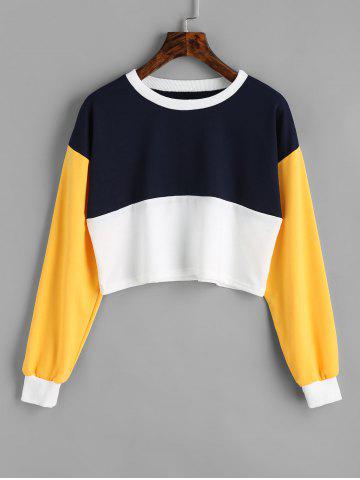 Shops Contrast Cropped Sweatshirt