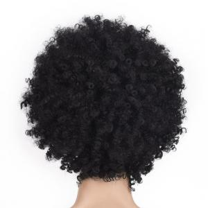 Medium Side Bang Fluffy Afro Kinky Curly Synthetic Wig -