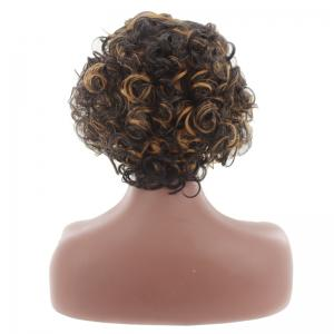 Short Center Parting Colormix Fluffy Curly Synthetic Wig -