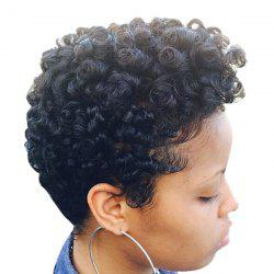 Short Fluffy Curly Human Hair Wig -