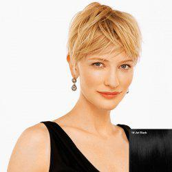 Short Capless Side Bang Layered Straight Human Hair Wig -