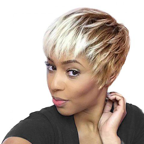 Shops Short Side Bang Layered Straight Pixie Ombre Human Hair Wig