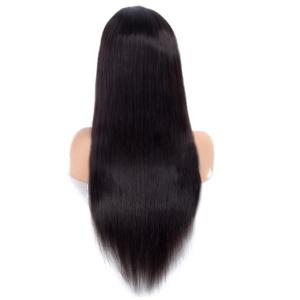 Middle Parting Long Straight Lace Front Synthetic Wig -